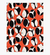 BEETLES AND STONES, orange, black, cream Photographic Print