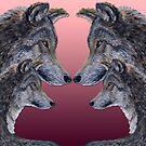 4 Wölfe/wolves red von Doris Thomas