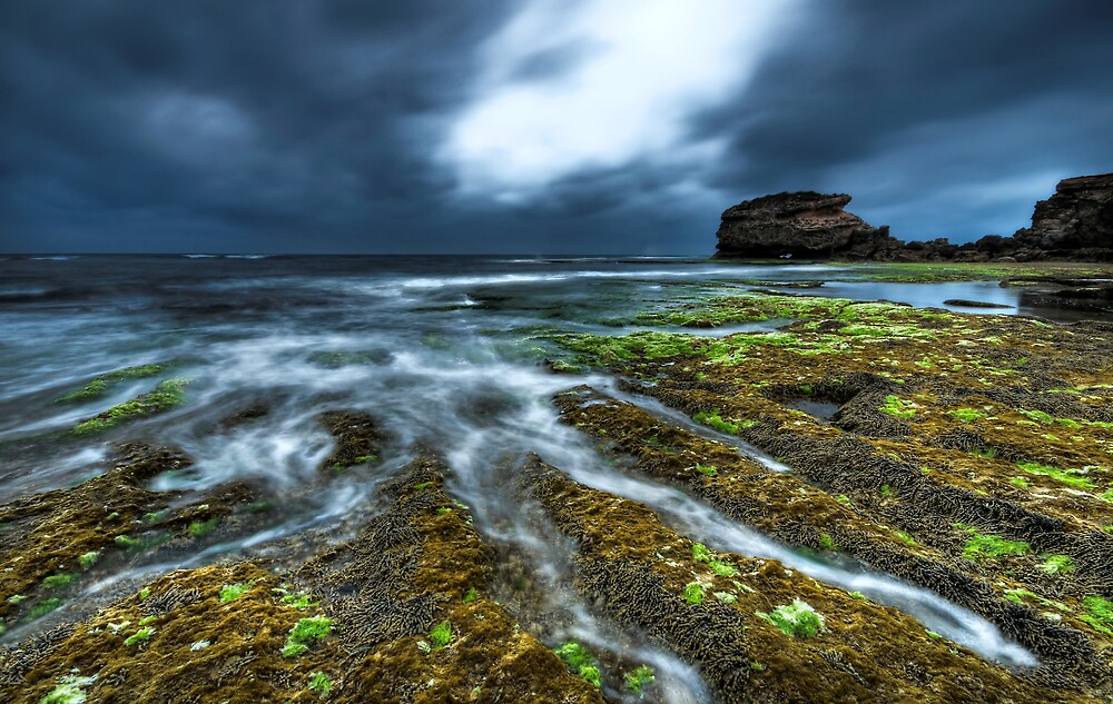 The Tides Spidery Flow by Robert Mullner