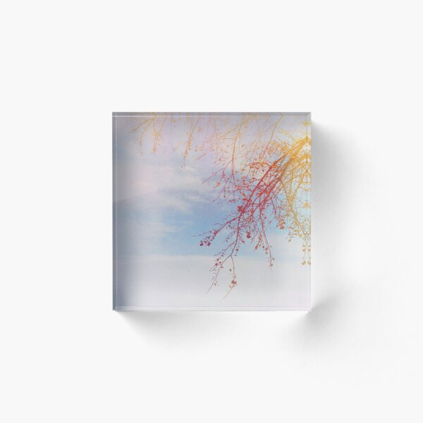 Red Branches Acrylic Block
