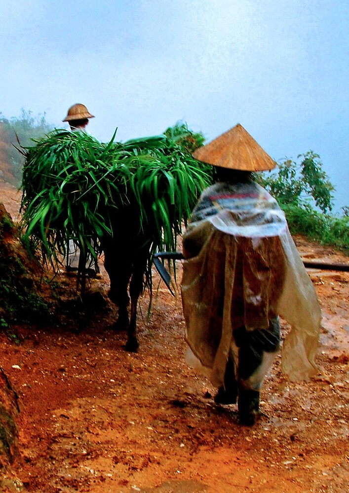 All in a Days Work, Sapa Vietnam by Simmone