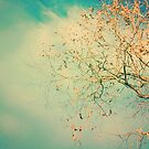 Teal Sky Autumn by anartfulsoul