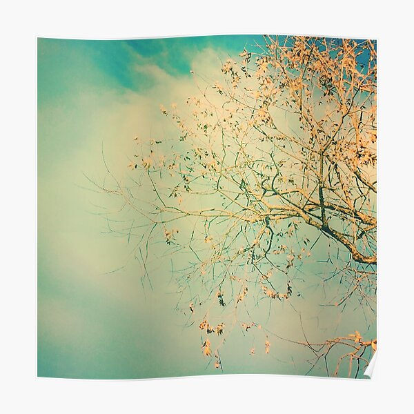 Teal Sky Autumn Poster