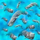 Pottwale / Sperm Whales / Cachalot V9 von Doris Thomas