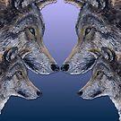 4 Wölfe/wolves blue von Doris Thomas