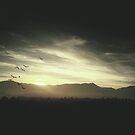Sunset Glistening in Black & White by anartfulsoul