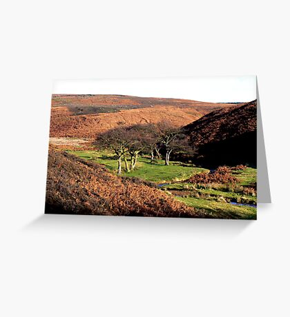 On the Edge of the Moors Greeting Card