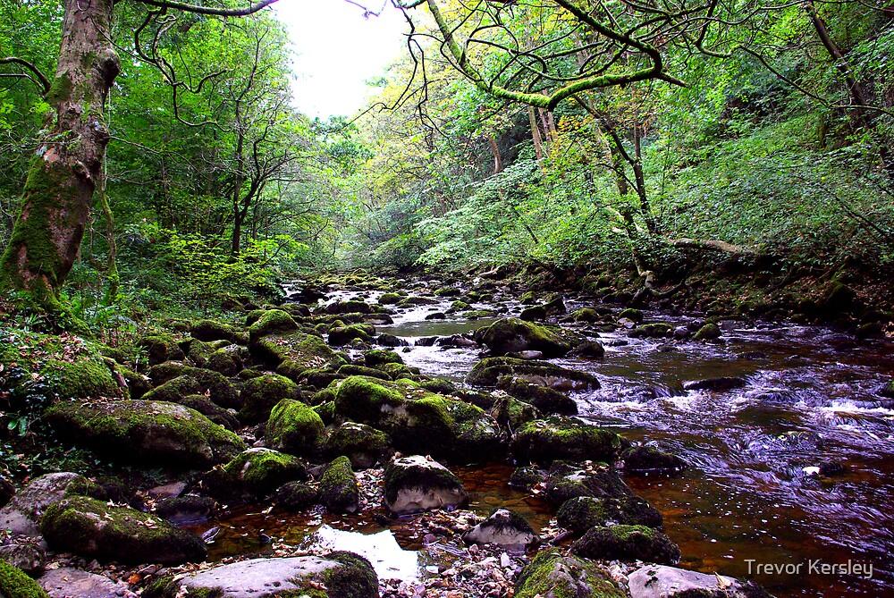 River Twiss by Trevor Kersley