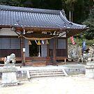 Toshogu Shrine by Michael McCasland