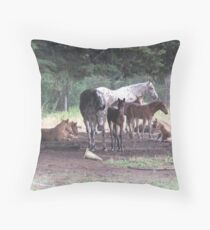Creche Duty at the Stud Throw Pillow