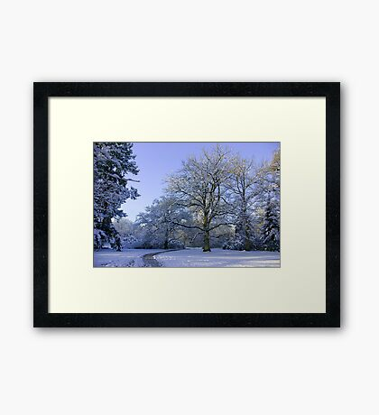 Path through Winter Wonderland Framed Print