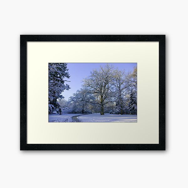 Path through Winter Wonderland Framed Art Print
