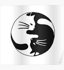 Yin and yang kitty Poster
