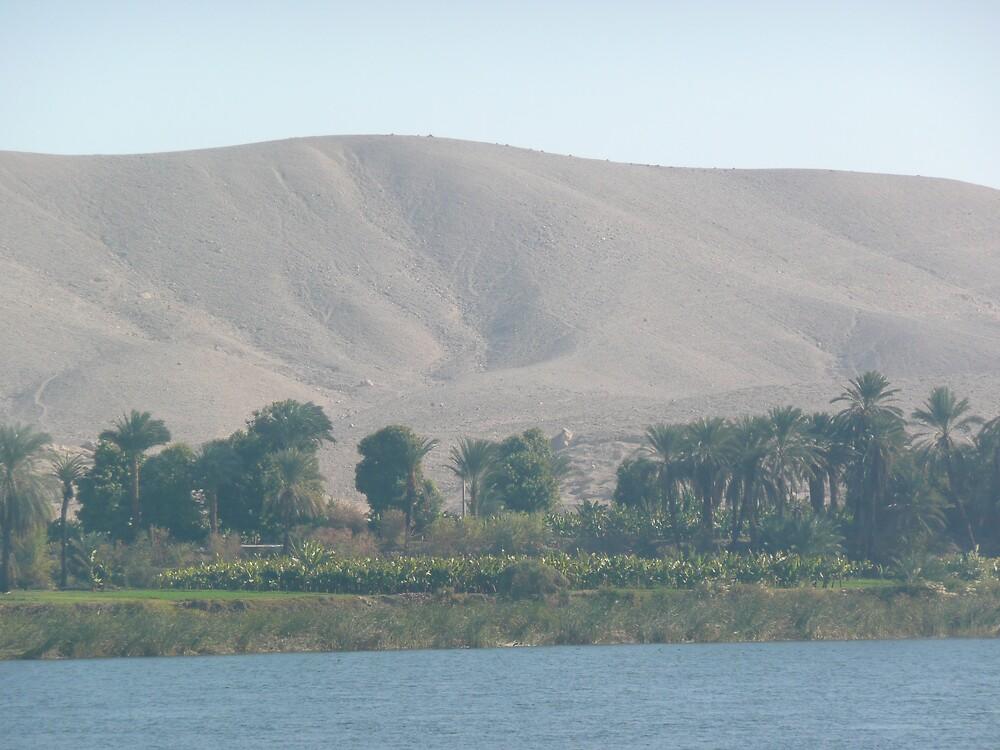 Along The River Nile by dgethin