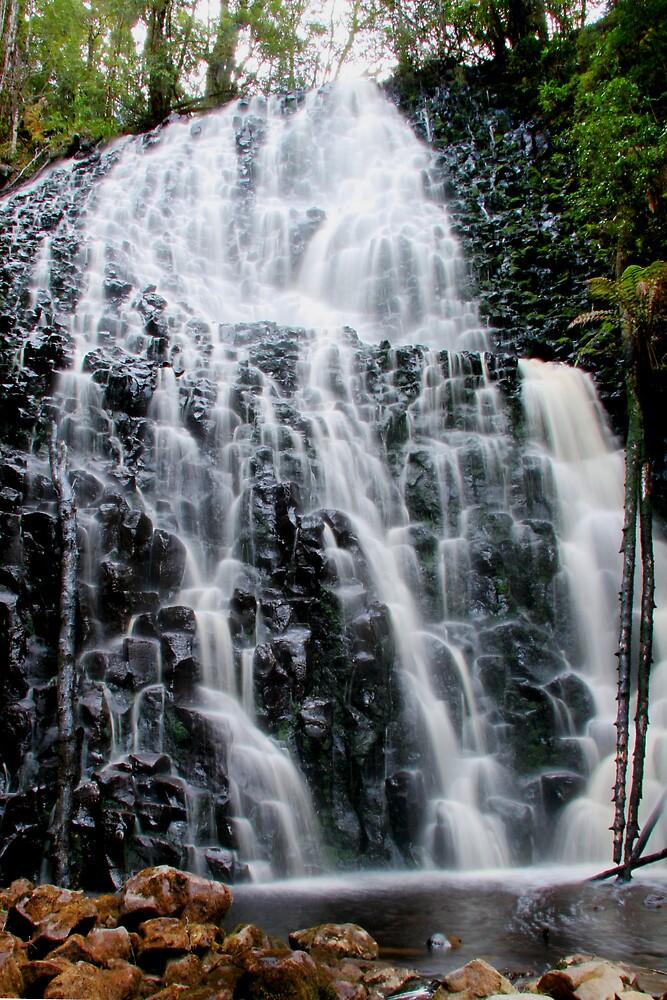 Tarkine Falls by Jeff Barnard