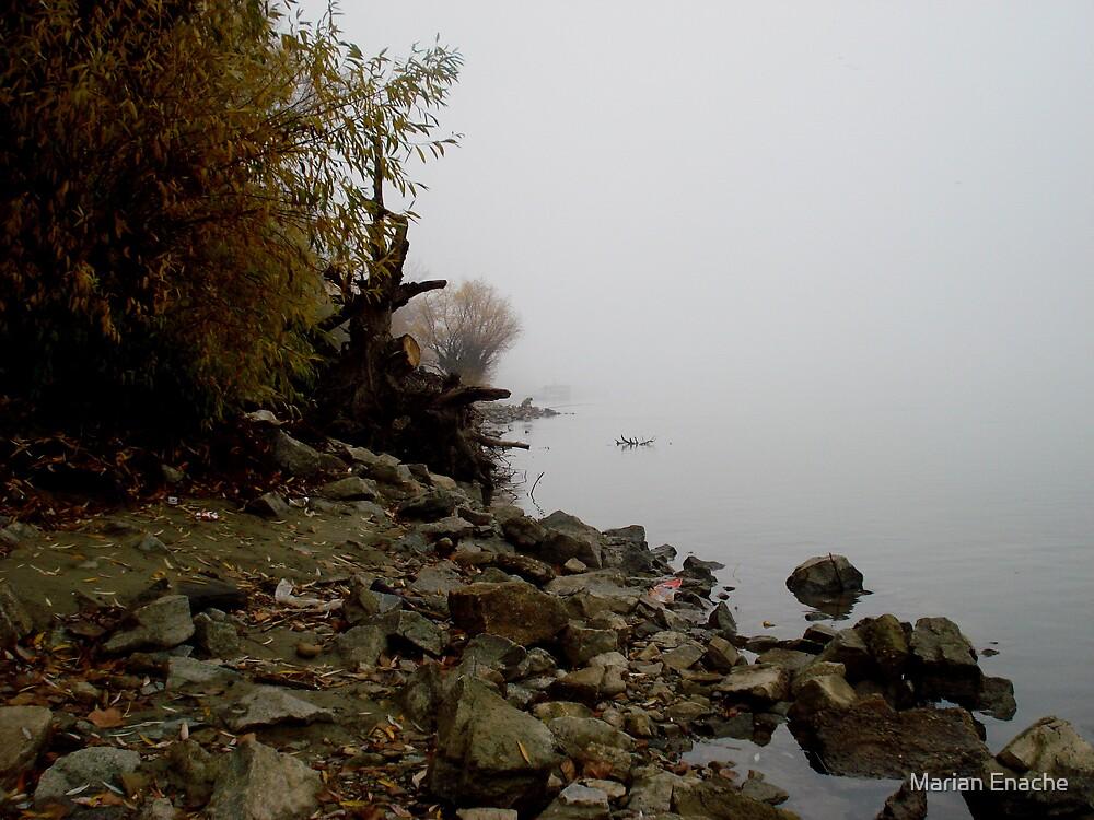 autumn by Marian Enache