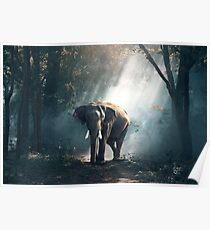 Elephant in Water Poster