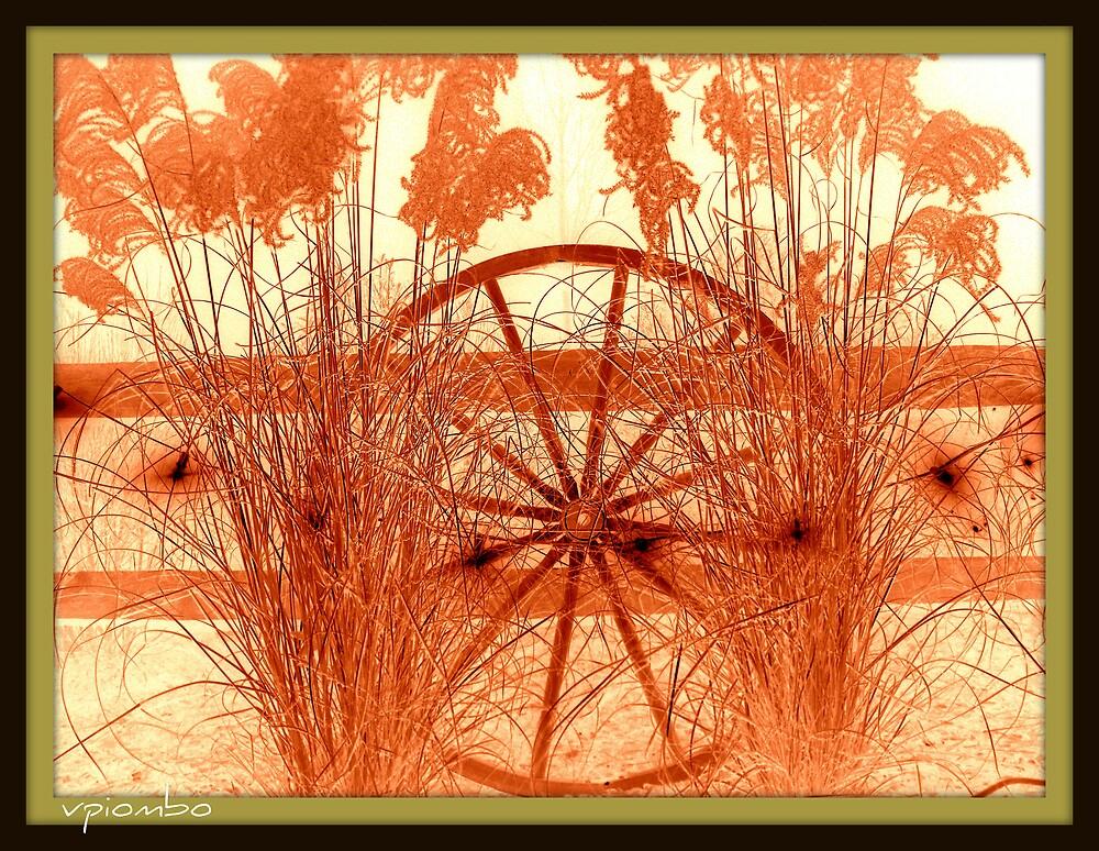 pin wheel by vpiombo