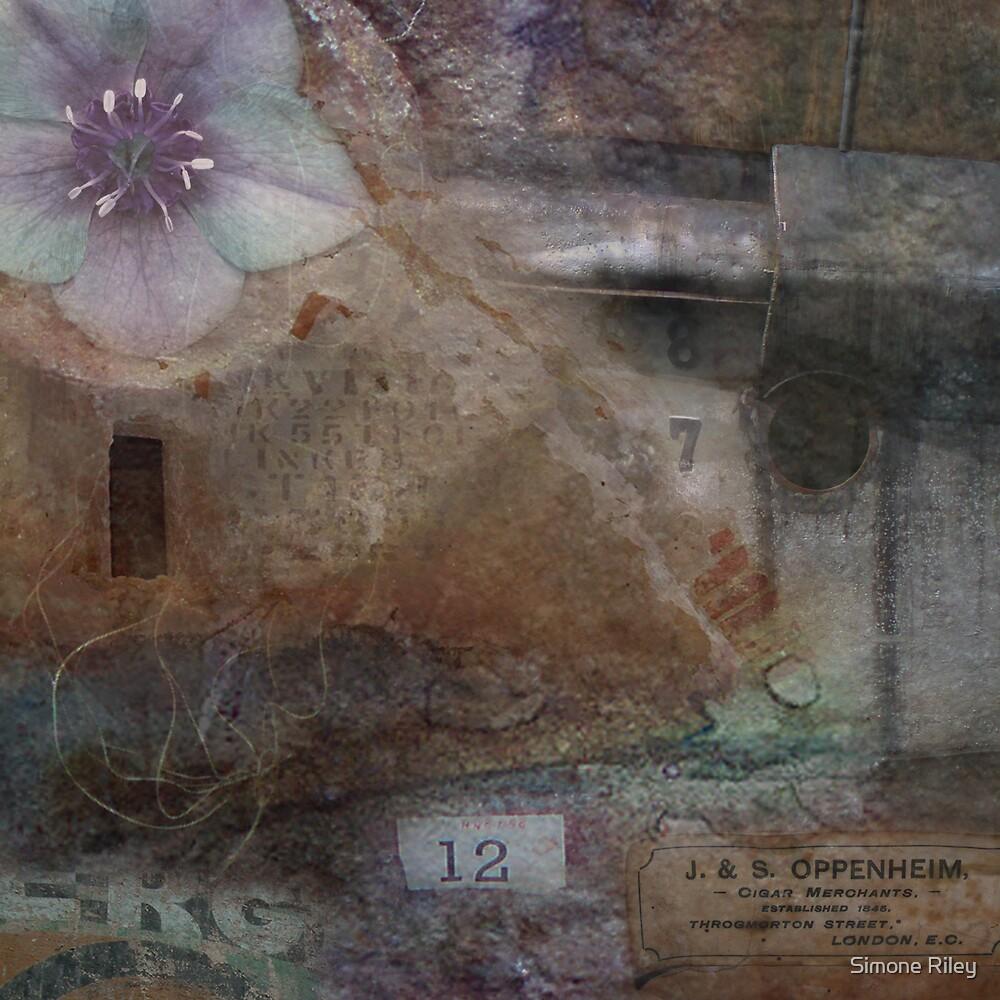Memory Box by Simone Riley