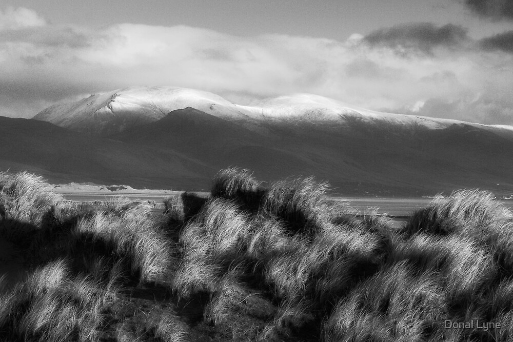 Slieve Mish by Donal Lyne