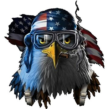 Eagle of United States  by Mauiwaves