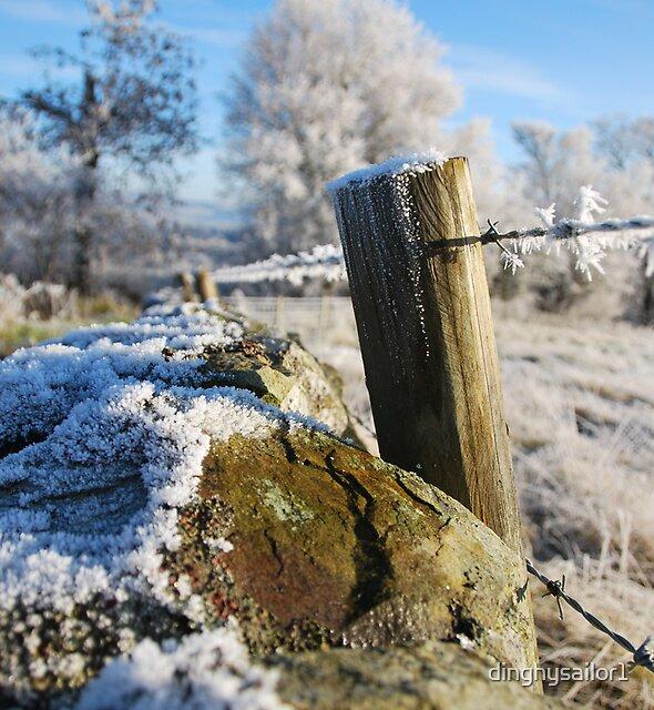 frozen  post by dinghysailor1