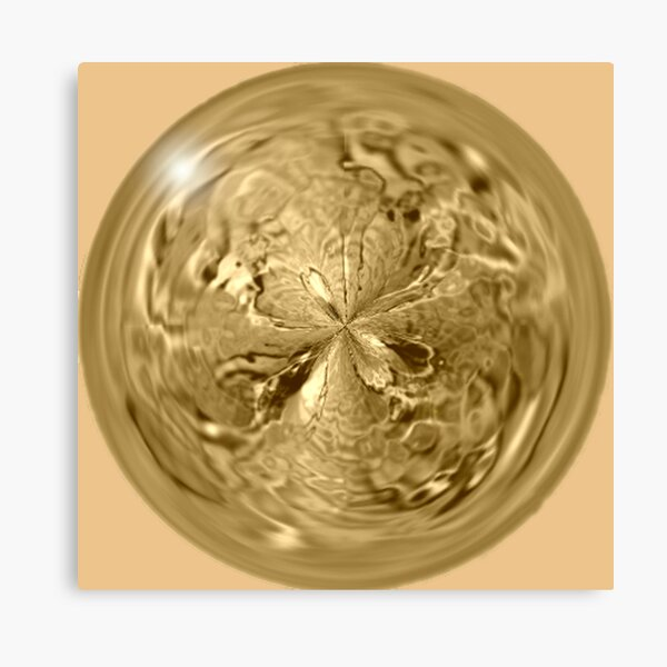 Gold decoration Canvas Print