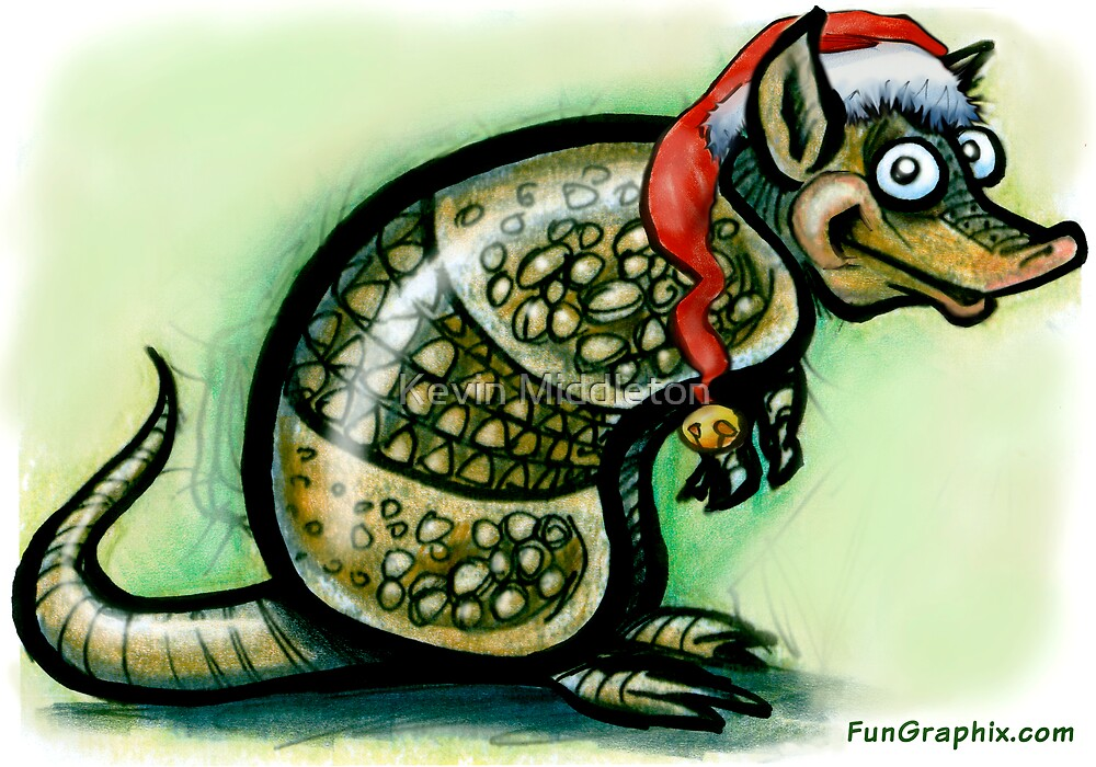 Armadillo Christmas by Kevin Middleton