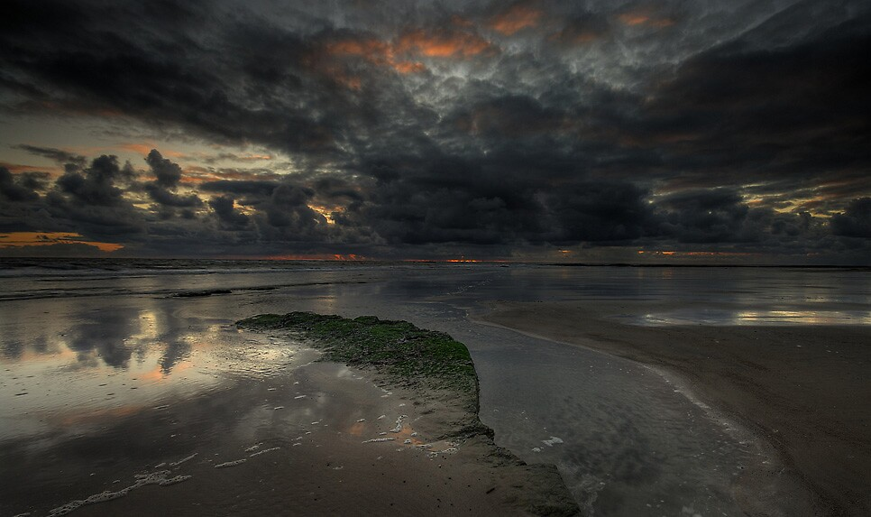 BROODING by STEVE  BOOTE