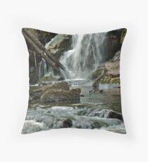 Turtletown Creek East Falls III Throw Pillow