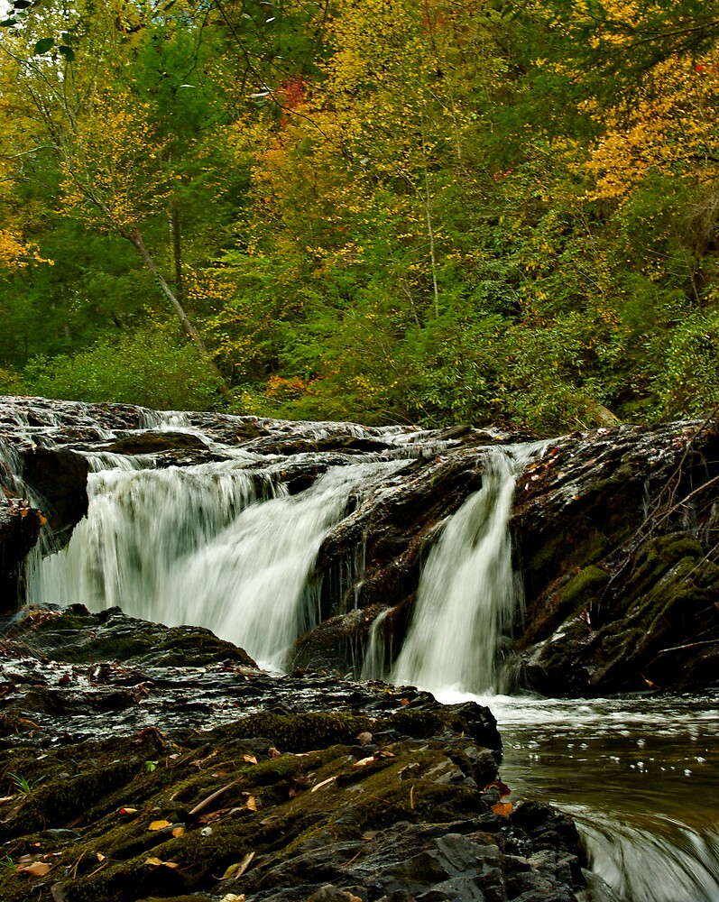 Rapids Above Turtletown Creek West Falls I by John O'Keefe-Odom