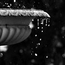 In Memory Of Water by Karen E Camilleri