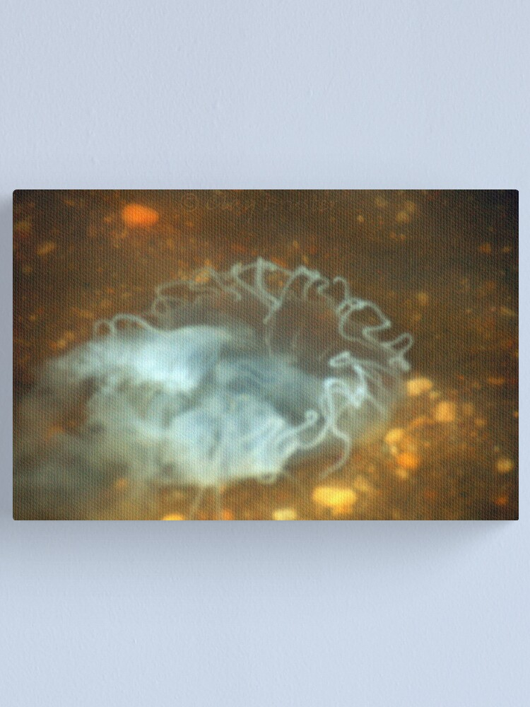 Alternate view of Jelly Fish Canvas Print
