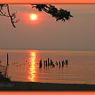 Sunset in Colonial Beach Virginia by Clayton Bruster