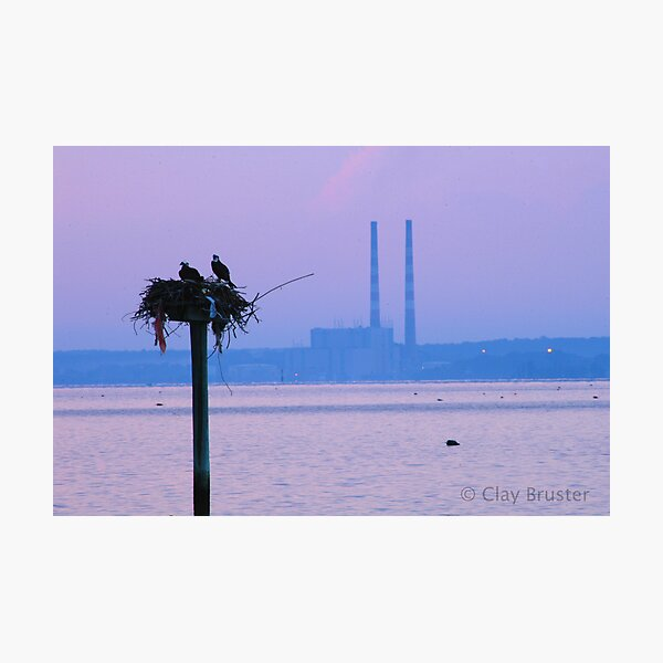 Industrial Life Photographic Print