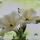 Lovely Lilies by Lorraine Wilson