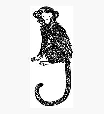 monkey Photographic Print