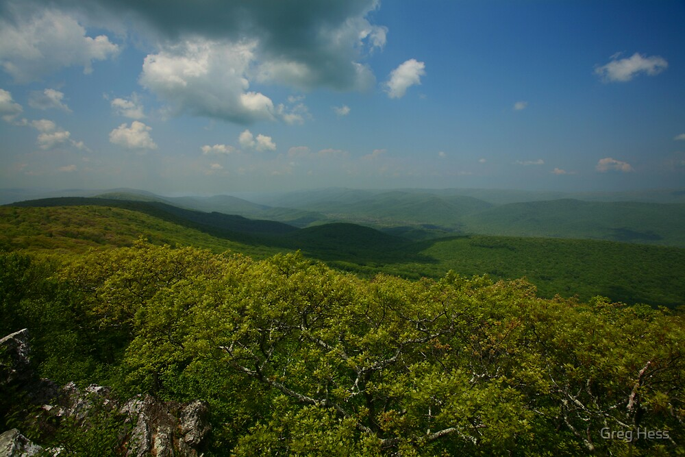 Green Hills of Virginia by Greg Hess