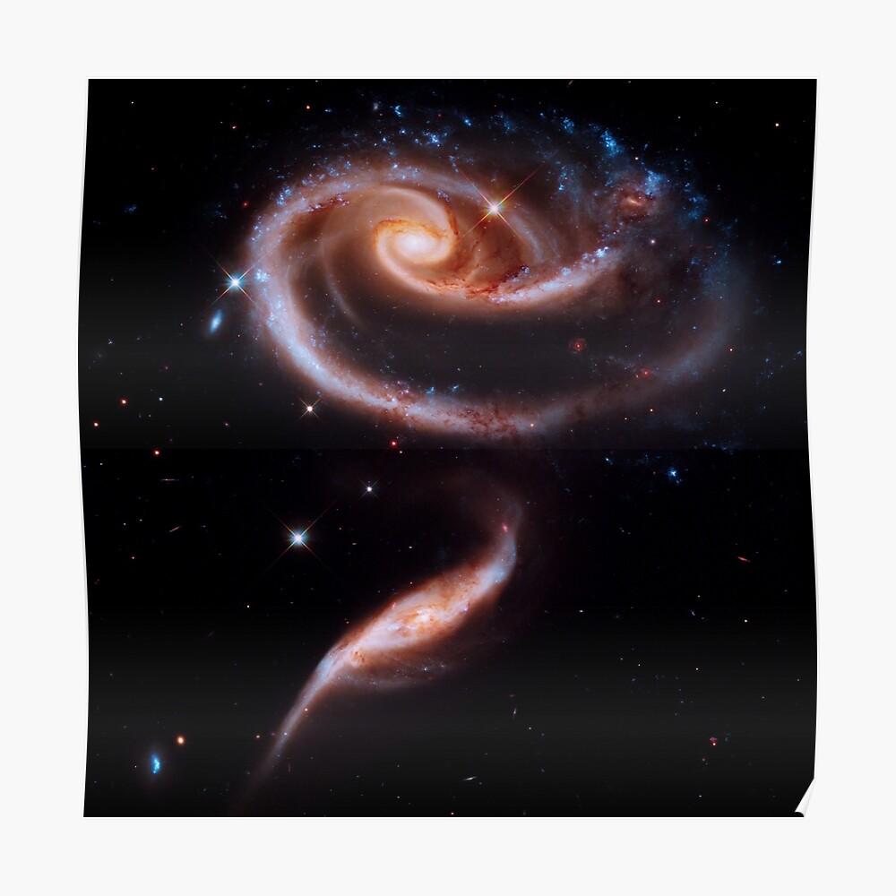 Eine Rose aus Galaxien Poster