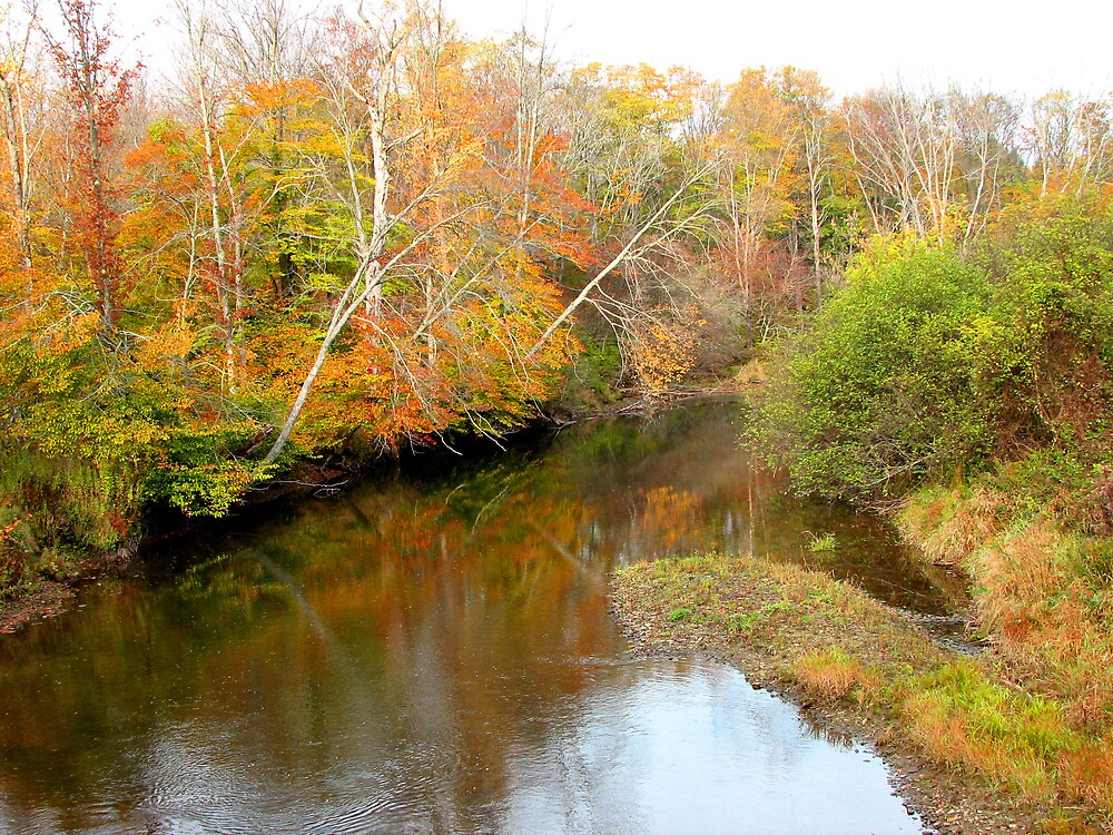 Autumn on the Alleghany river by greendarner