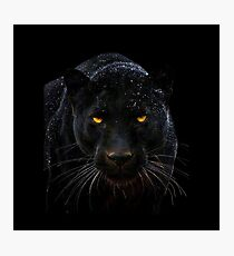 Black Panther Close up  Photographic Print