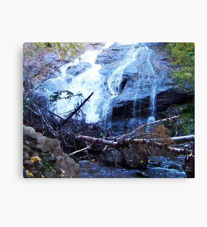 Beulach Ban Falls, Cape Breton Island Canvas Print
