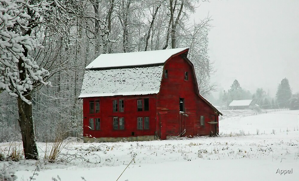 Red Barn of Winter by Appel