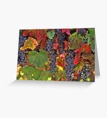 Beautiful Harvest Vineyard Greeting Card