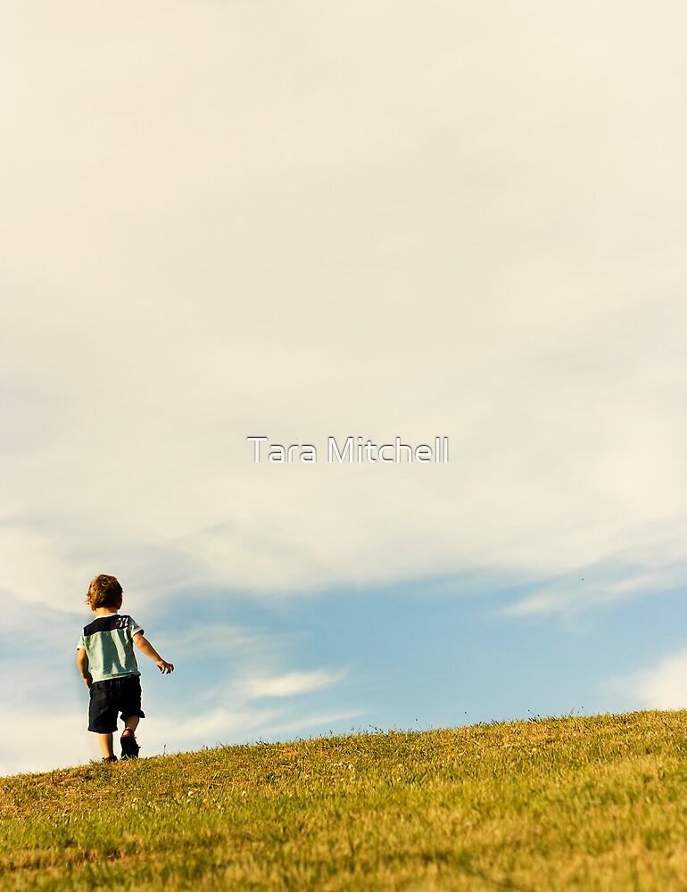 small boy, big world by Tara Mitchell