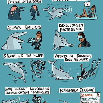 Dolphins and Marine Biologists by rohanchak