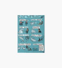 Dolphins and Marine Biologists Art Board