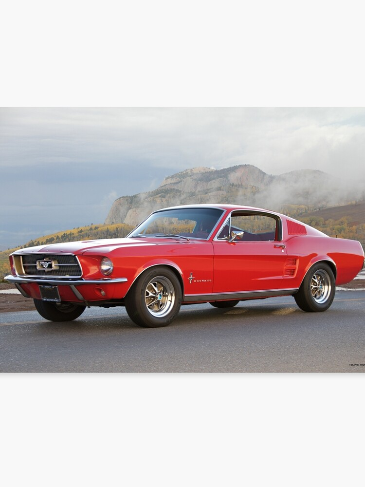 1967 Mustang Fastback >> 1967 Mustang Fastback I Canvas Print
