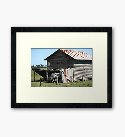 farmscapes #66, old drying shed Framed Print