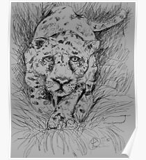 LEOPARD (DRAWING)(C2012) Poster